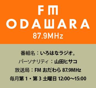 野村商店プレゼンツ♪「いろはなラジオ。」8/3スタート!!